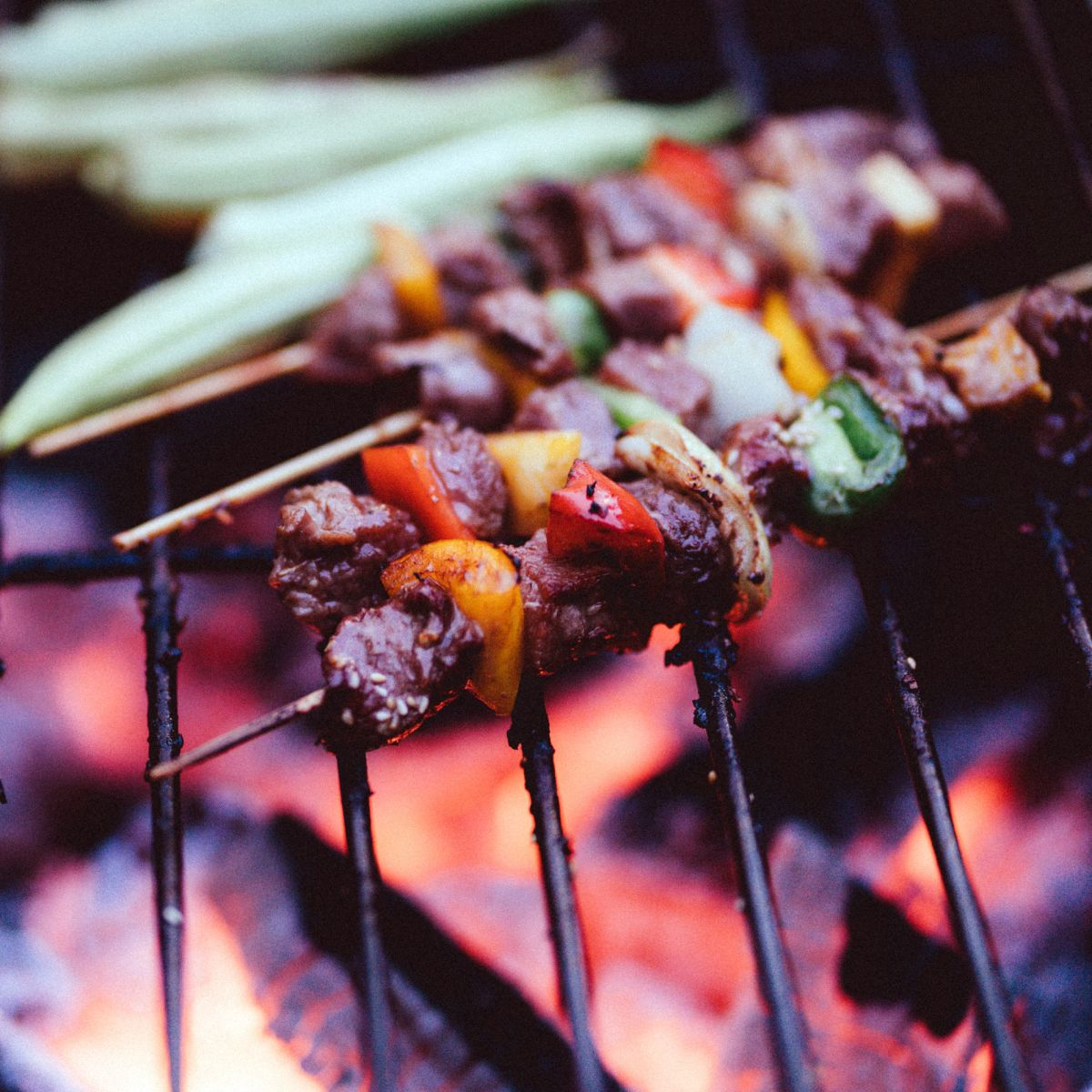 Bamboo skewers on the grill