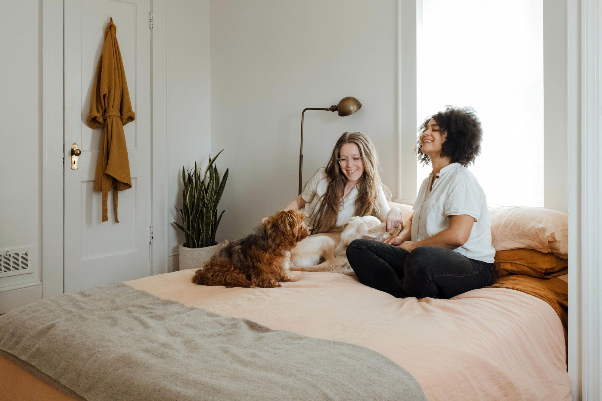 Women petting dog on bed; bamboo floor lamps